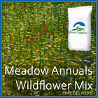 100% Wildflower Seed Mix - 100% FLOWERING MEADOW ANNUALS FOR BEES BUTTERFLIES