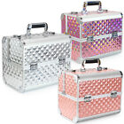 New Extra Large Vanity Case Beauty Box Make Up Jewelry Cosmetic Nail Storage Box