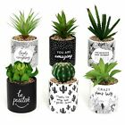 Pot Plant Indoor Outdoor Garden Mini Ceramic Pots Plants Home Decor Gift Emotive