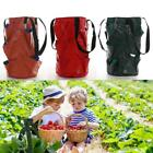 Garden Hanging Strawberry Tomato Planter Bags Vegetable Flower Plants Grow Bag