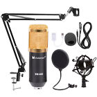 Condenser Microphone Kit Studio Audio Recording Arm Stand Shock Mount Pop Filter