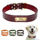 Real Leather Personalized Dog Collars Name Number Engraved for Small Large Dogs