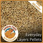 Layers Pellets | Complete Everyday Feed | Chicken Feed | Poultry Food