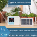 LN_ Solar Power Garden Timing Dual Pump Automatic Irrigation System Watering D