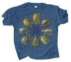 NEW Youth Size T Shirt Turtle Circle Full Color on Cotton Sm Med Lg