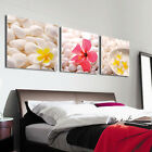 Spa Wall Art - Flowers On White StonesTop Quality Canvas Print Set Of 3