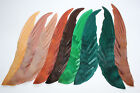Vintage Feather Millinery Wing Hat Trim 5449 hair accessory band supply