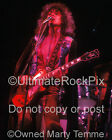 T Rex Photo Marc Bolan 20x24 Inch Concert Photo in 1973 by Marty Temme 1A