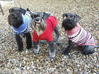ANCOL WARM THERMAL CABLE KNIT JUMPER DOG PUPPY UNISEX SWEATER - NUTS ABOUT MUTTS