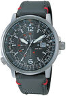 Citizen Promaster Nighthawk Euro Mens Pilots Nylon Watch BJ7010-16E BJ7017-09E