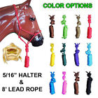 NEW PROFESSIONAL 5/16 in. POLY ROPE HALTER HEADSTALL W/ 8 ft. LEAD - HORSE SIZE