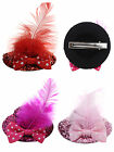 Baby Girls Bow Feather Decor Top Sequins Party Mini Hat Hair Clip Hairclip