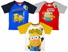 Boys Official Despicable Me I Speak Minions Cotton T-Shirt Top 3 4 6 8 Years NEW