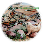 A41 ~ Sea Lion, Seal & Baby Pup on Ceramic Decal, 5 sizes to choose from, Harbor image