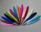 Wholesale 20-2000 PCS 4-6inches/10-15cm Beautiful Goose Feather Home Decor DIY