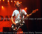 Mike Dirnt Green Day 11x14 Large Size Concert Photo by Marty Temme 1C Fender
