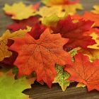 88G - 100 Pcs Multi Colored Artificial Autumn Maple Leaf Leaves Xmas Decorations