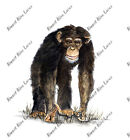 AFRICAN CHIMPANZEE CHIMP JUNGLE APE VINYL DECAL STICKER ACER GALAXY LG PRINTER