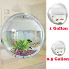 Fish Bowl Wall Mount Betta Tank Aquarium Round Hanging 1 Gallon Bubble Acrylic
