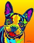 Made in USA Multi-Color Boston Terrier Dog Breed Matted Print Wall Decor