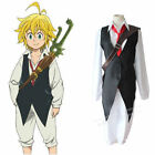 The Seven Deadly Sins Dragon's Sin of Wrath Meliodas Cosplay Costume K60