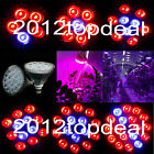 E27 27W 36W 45W 54W PAR38 LED LED Grow Light Red & Blue LED Spectrum for Plant