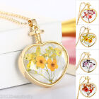 1PC New Fashion DIY Gold Plated Diamante Dried Flower Pendant Necklace Women