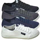 Mens Henleys Canvas Shoes Designer Lace Up Pumps Trainers Plimsoles Footwear New