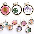 Wishing Glass Locket Pendant Real Dried Flower Long Sweater Chain Necklace