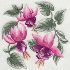 Embroidered 28x28 Flour Sack Kitchen Towel SKETCHED FLOWERS Tulips 4 Choices