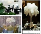 "20/50 pieces Natural 10-16"" Ostrich  Feather Wedding Party Holiday Decor DIY"