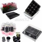 Germination Seed Starter Tray Seed Box Flower Plant Pot For Home Office Decor.