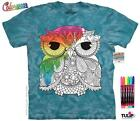 OWL 1 COLORWEAR ADULT T-SHIRT THE MOUNTAIN