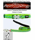 Premium Red Dingo Dog Collars & Leashes - Lime with Blue Stars -  Pick Size