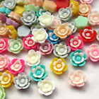 50/250pcs Flowers Resin Flat Back Cards Cake Deco Phone Cover DIY Craft  B0491