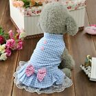 DOG DRESS TOP XS TEACUP SMALL PUPPY UK CHIHUAHUA CLOTHES TOP 18CM BLUE CHECK
