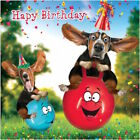 GOGGLIES 3D MOVING EYES FUNNY DOGS ON BOUNCERS BIRTHDAY GREETING CARD 1ST P&P