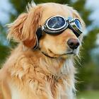 Doggles Sidecar Dog Goggles Sunglasses Eye Protection: Choose COPPER or SILVER