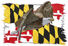 Maryland Flag Tattered Eagle Printed Vinyl Decal Wall Car SUV Truck Auto Sticker