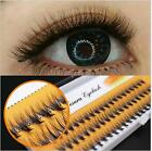 NESURA EYELASH EXTENSION VOLUME LASH FANS 3D SEMI PERMANENT SYNTHETIC-0.07C CURL