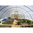 4 Year 6 Mil Clear Plastic Greenhouse Poly Film 40 ft. Wide - *VARIOUS LENGTHS*