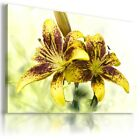 LILIES FLOWERS ABSTRACT MODERN CANVAS WALL ART PICTURE LARGE SIZES AZ51 X