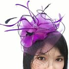 Feather Bead Net Fascinator Birdcage Veil Headpiece Hair Clip Wedding Race Ascot