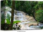 Dunn's River Falls, Jamaica Art Print Home Decor Wall Art Poster - C