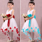 Baby Girls Kids Princess Flower Petals Party Fantasy Formal Gown Fancy Dress