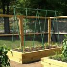 Ecostake Garden Stakes  for Climbing Plants Supports Pole Rust-free Fence Post