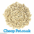 PREMIUM GRADE DRIED sunflower hearts 1KG, 2.5KG, 5 KG, 10 KG, 20KG,