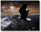 Eagle Flying above Mountain Ruane Manning Wall Art Print Picture