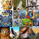 Owl Animal DIY Paint By Number Acrylic Oil Painting Art Wall Home Decor Scenery
