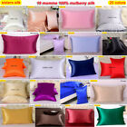 1pc 19mm 100% Mulberry Silk Pillow Case Cover Zipper Close All Size Sisters-Silk image